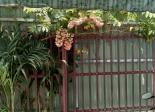 Nhà trọ cho thuê Phường Thạnh Lộc quận 12