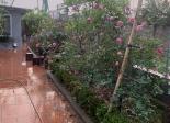 Chính chủ bán nhà vườn Đông La, Hoài Đức, sổ đỏ, mặt đường ô tô đỗ cửa giá 8 triệu/m2