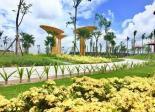Đất nền Khu Đô Thị The Sun Bàu Bàng