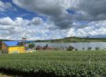 Bán đất thổ cư tại xã Phúc Thọ - Lâm Hà - Lâm Đồng