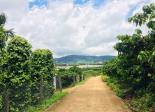 BÁN lô đất vườn với DT  797m2 ở Lâm Hà - cách Đà Lạt 20km,sẵn sổ và thổ cư 100m2