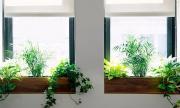 7 ý tưởng trang trí độc lạ cho khung cửa sổ thêm lung linh